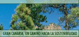 Inscripción para las Primeras Jornadas sobre Desarrollo Sostenible en Gran Canaria