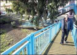 El Ayuntamiento de Las Palmas de Gran Canaria permite construir en una zona verde de Tafira