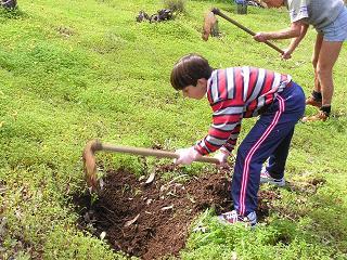 34 personas se aventuraron a participar con los ecologistas en la repoblación