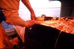 Japón admite que carne de la ballena va a los perros