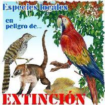 76.000 especies en peligro de extinción : la ONU alerta de la mayor pérdida de biodiversidad desde la desaparición de los dinosaurios