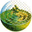 Cursillos de PermaCultura (ciencia de la sostenibilidad)