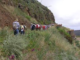 Finalizada con éxito la ruta al Barranco de Colmenillas (Gáldar y Guía)