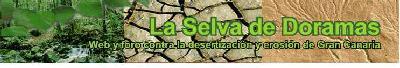 """Visite """"La Selva de Doramas"""", nuestra blog especializada en desertización, cambio climático y calentamiento global"""