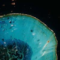 EE UU crea en Hawai la mayor reserva marina del mundo