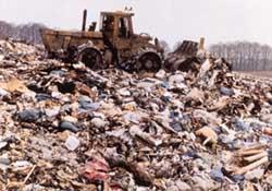 Un cuarto de las muertes del mundo son por riesgos medioambientales evitables según la OMS