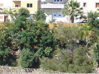 El Colectivo Turcón-Ecologistas en Acción muestra su preocupación por una zona verde de Marpequeña.