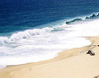 Playa de Las Canteras : reclaman una segunda extracción