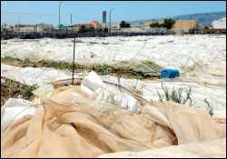 Menos agricultura: los últimos invernaderos caen de la nueva zona comercial de Vecindario