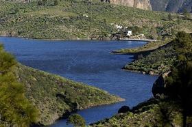 Bacterias en la presa de Parralillo