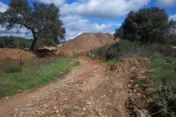 Medio Ambiente recupera este año 528 kilómetros de vías pecuarias en Andalucía