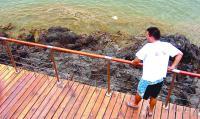 Canarias vive su mayor crecimiento de algas marinas por la calima y el calor