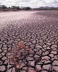 El mundo se queda sin agua