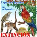 Medio Ambiente encarga un catálogo de las especies en peligro en las Islas