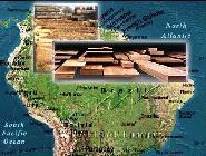 Greenpeace denuncia la relación entre la importación de madera y la violación de los derechos humanos