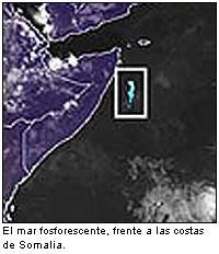 El misterio del mar fosforescente
