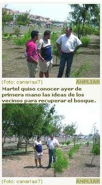 El nuevo edil de parques visita el bosque talado en Melenara (Telde) por el alcalde Valido