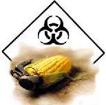Nadie quiere los OGM, salvo los industriales