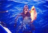 Los clubes de pesca submarina rechazan la veda temporal que pide el Plan Insular de Gran Canaria. La Isla es donde se admite un mayor número de nasas por barco