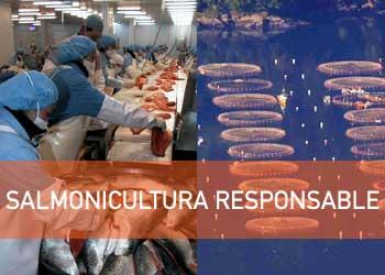 Los costos de la Salmonicultura